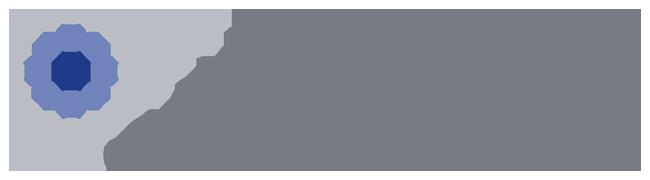 e-Solution Software - Portfel - Torro Investment
